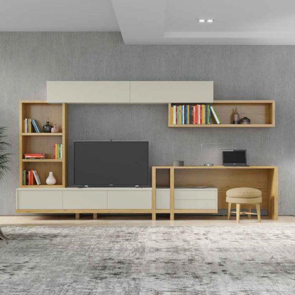 Shelf-TV Units
